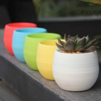 Mini Pot Bunga Hias Kaktus Tanaman/Serba Guna