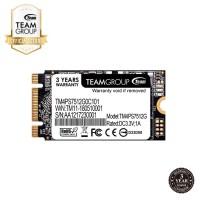 TEAMGROUP SSD M2 Sata 2242 512GB MS30