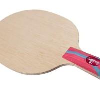 DHS Fang Bo Carbon Pen Bet Tenis Meja Bat Pingpong