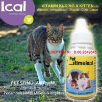 Info Vitamin Penambah Nafsu Makan Kucing Katalog.or.id