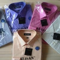 ALISAN Kemeja Polos Reguler Lengan Pendek //Size 14,5 - 16//