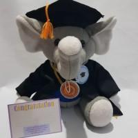 boneka wisuda gajah
