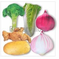Bantal Bentuk Sayuran