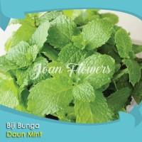 Benih Daun Mint (Original Mint Seeds, High Quality seeds)