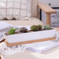 AR Sederhana Putih Kreatif Mini Succulent Keramik Panjang Bar Pot