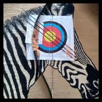 Promo Eksklusif !!! Busur Panah Paket 3 Arrow Fiber Terlengkap Kode