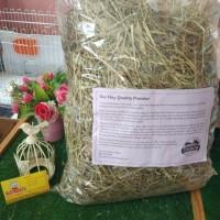 oxbow hay repack 100 gr rumput import pakan kelinci