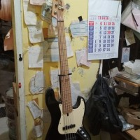bass elektrik fender new senar 5