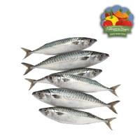 Ikan Kembung Banjar - 500 gram