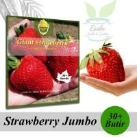 Benih Biji Giant Strawberry Jumbo - Harvest Seed