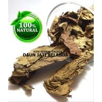 Jamu Herbal Tradisional Tanaman Obat Teh Daun Jati Belanda Untuk