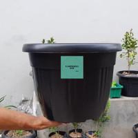 pot bunga tanaman plastik hitam Grace 35cm - kuping