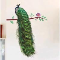 Stiker Dinding / Stiker Kaca / Wall Sticker (Burung Merak Ekor Hijau)