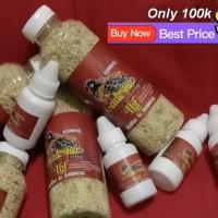 Pakan lomba dan vitamin stamina untuk lovebird balibu dan dewasa