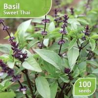 100 Seed - Basil Sweet Thai (Benih Basil) Jaminan Kualitas