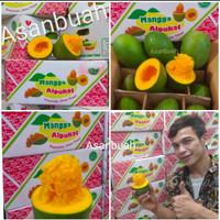 buah mangga alpukat harum manis matang pohon avomango klonal /kg