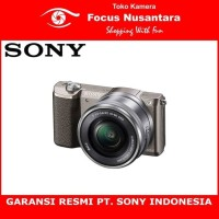 SONY Alpha A5100 Kit 16-50mm f/3.5-5.6 OSS (Brown)