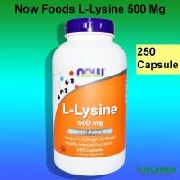 Now Foods L-Lysine 500 mg 250 Caps Amino Acid Asam Food Llysine 500mg