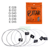 Senar Gitar Klasik Orphee NX35 Classic Guitar Nylon String Clear