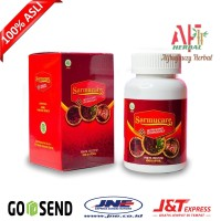 Obat Kesemutan Tidak Sembuh Sembuh Walatra Sarang Semut Original 100