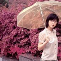 Payung Transparant Payung Bening Payung Korea Payung Transparan Murah