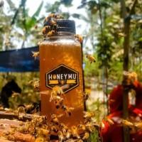 Raw Honey Asli [350gr/250 ml]