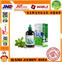 K Liquid Chlorophyll 500ml, PT K-Link Indonesia