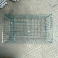 Perangkap Tikus Masal Kawat Biasa