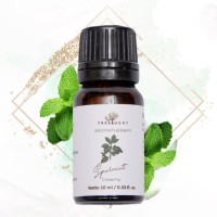 Treetment Spearmint Aromatherapy Oil 10 mL