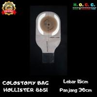 Kantong Hollister 8651