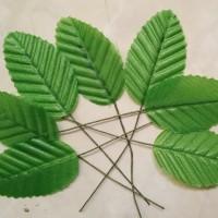 isi 10 daun tangkai panjang