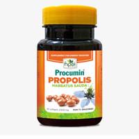Procumin Propolis Habbatussauda