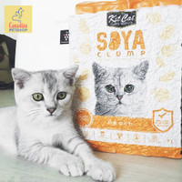 Jual Cats Best Original 40 L 17 2 Kg Pasir Kucing Kab Bogor Petshop Canadian Tokopedia