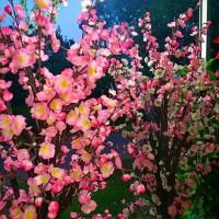 Bunga Sakura 170cm Bunga Mei Hwa Artificial Hiasan Imlek Vas Kayu