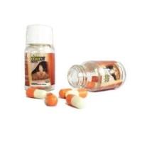 doxy cat im organic obat flu kucing doxycat 1 botol isi 10 kapsul