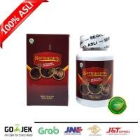 Walatra Sarang Semut 100% Asli Original - Mecodia - Sarang Semut Papua