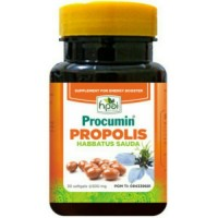 Procumin propolis habbatussauda HNI