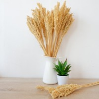 Bunga Cantel (Dekorasi Rumah/Bunga Hias/Tanaman Artificial)