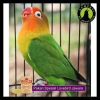 Milet Putih Moncer Pakan Burung Lovebird Kenari Parkit 1 Kg