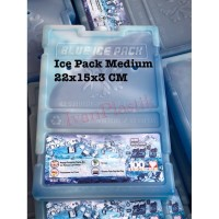 BLUE ICEPACK MEDIUM 22X15X3 CM