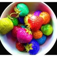 SALE biji benih buah Strawberry Rainbow / 30 biji
