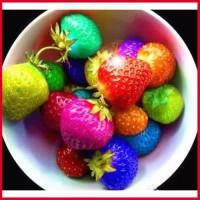 Repack Benih Strawberry Rainbow isi 15