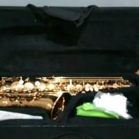 saxophone alto ostrava gold series