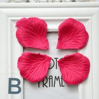 rose petals kelopak bunga mawar untuk fotografi