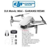 DJI Mavic Mini - Drone Garansi Resmi