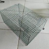 kotak jaring Jebakan Perangkap kandang Tikus masal Mouse Trap besar