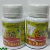 obat herbal khasiat ampuh mengobati radang usus besar isi 70 kapsul