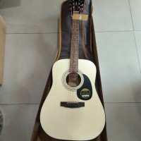 CORT AD810E / AD 810E OP Acoustic Electric Guitar with Bag
