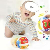 Mainan Bola Bayi Berbunyi, Shake Rattle and Roll Ball / Bola lentur