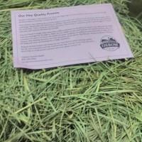 Makanan kelinci guinea pigs OXBOW Orchard hay 1kg Setara Rumpu Timothy
